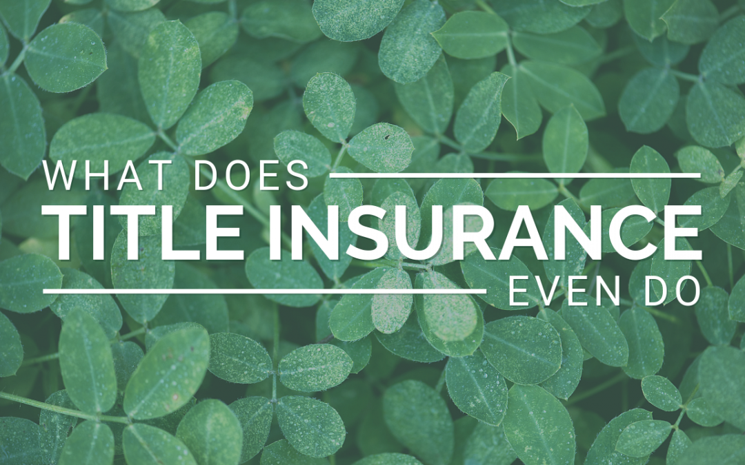 What Does Title Insurance Even Do?